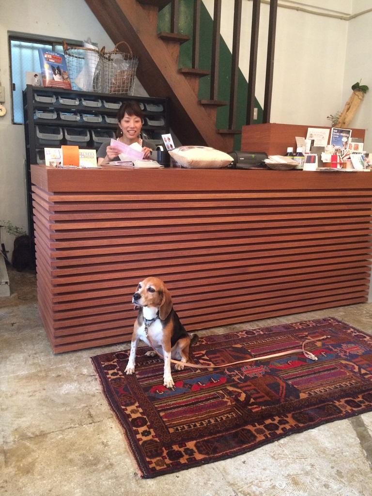 店長と看板犬