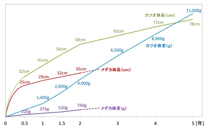 めぢかとかつおの成長グラフ