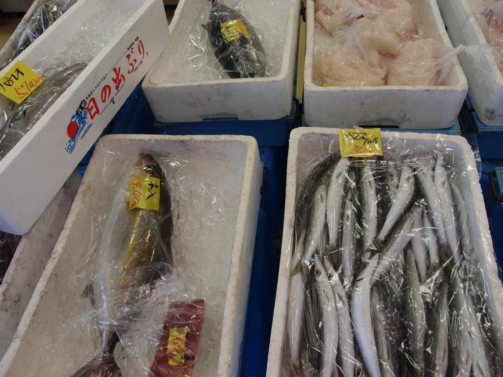 当日獲れの新鮮な魚